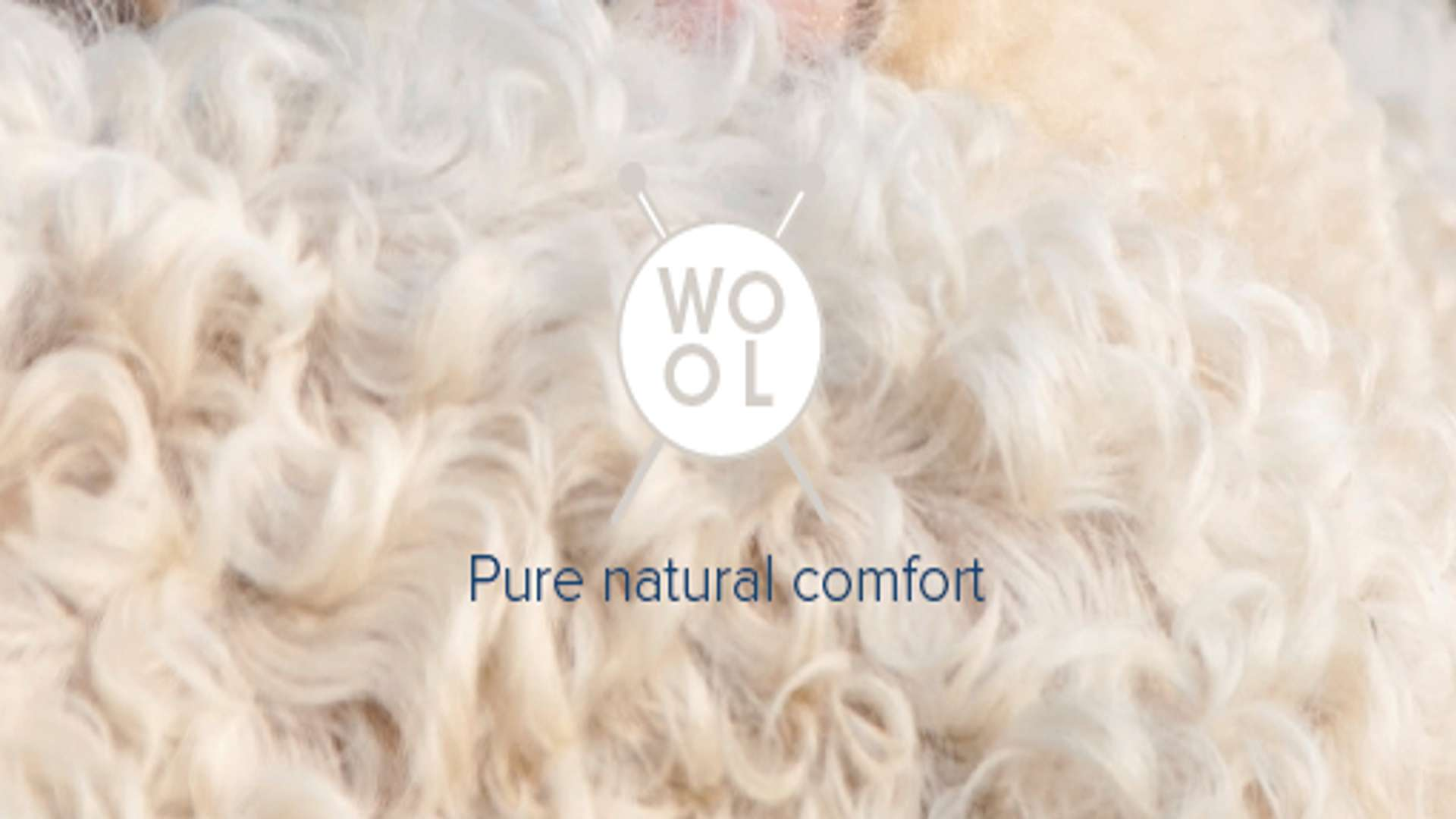 Hero image for Wool