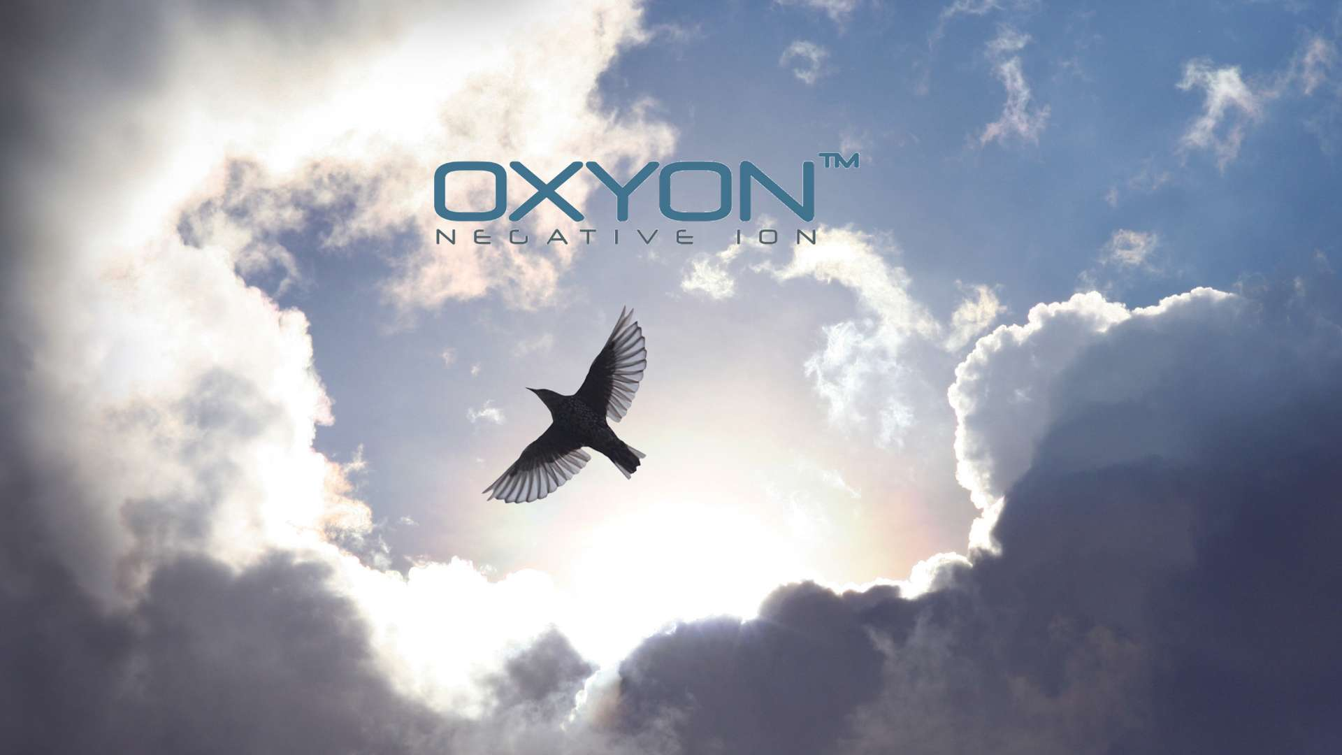 Hero image for Oxyon
