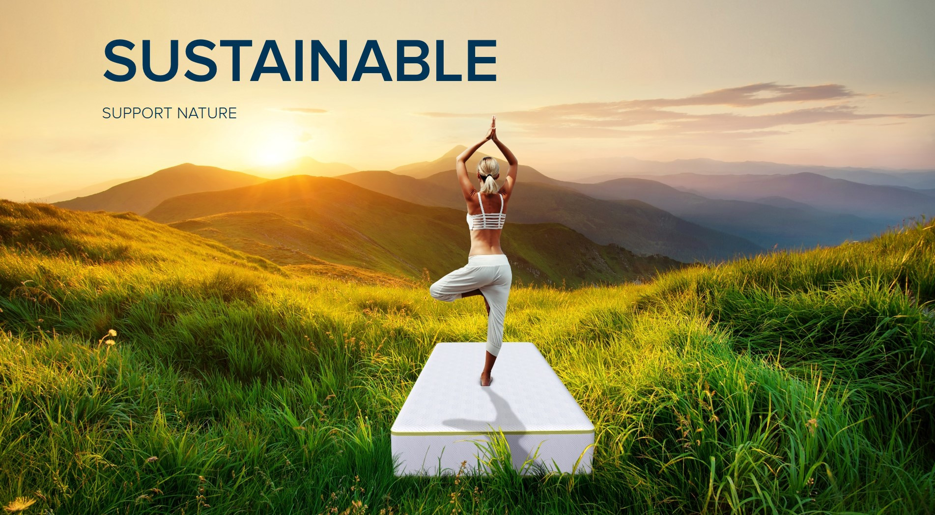 Hero image for Sustainable